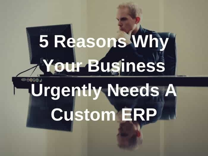 5 Reasons Why Your Business Urgently Needs A Custom ERP
